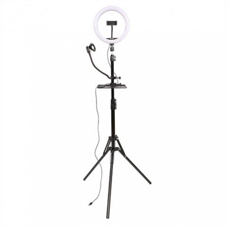 LED Vlog Set SK-K190 with Ring Lamp and Microphone Holder